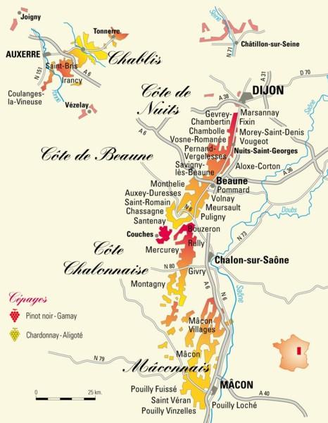 Carte Vin Bourgogne Blanc.Le Vignoble De Bourgogne Du Xixeme Siecle A Nos Jours